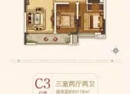 三室两厅二卫C3户型