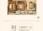 三室两厅一卫B1户型