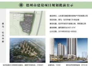 黑马·牡丹华都17#楼建设工程规划