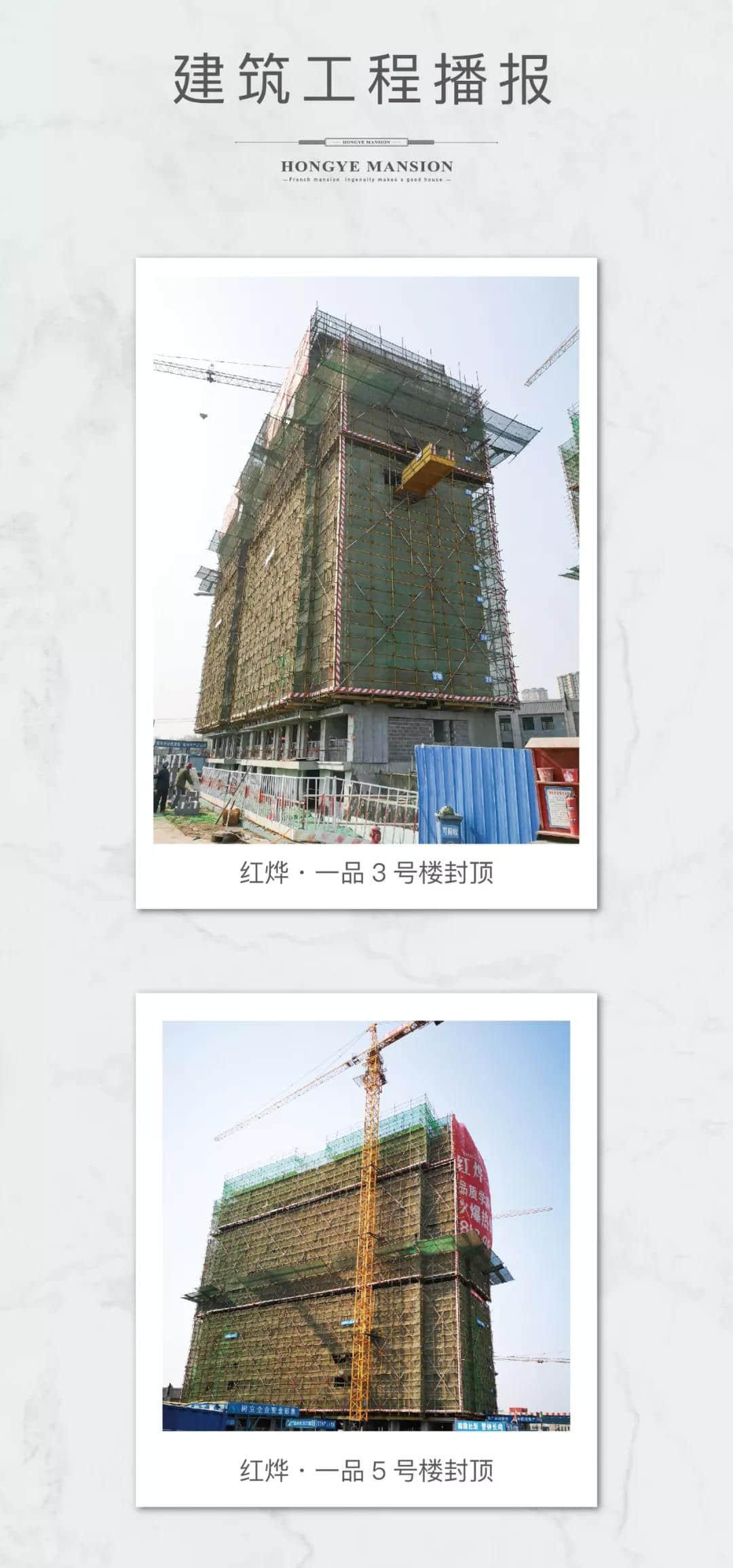 工程进度播报丨红烨·一品精雕