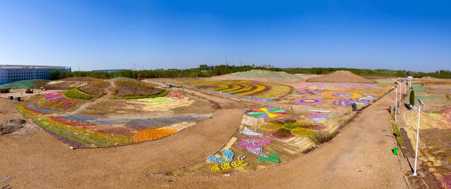 山东德州:太阳谷现数十万支彩虹风车花海,随风舞动,甚是惊艳!