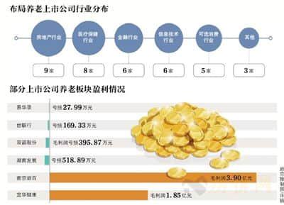 37家养老概念公司 地产金融及医疗行业占6成-中国网地产